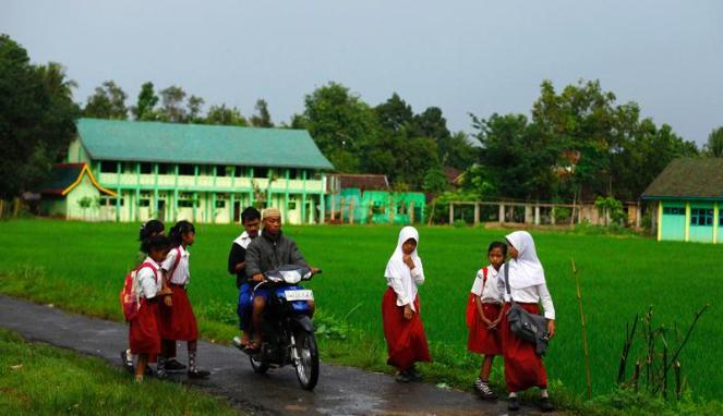 Sawah dan sekolah