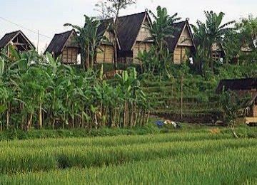 Penggunaan Lahan di desa