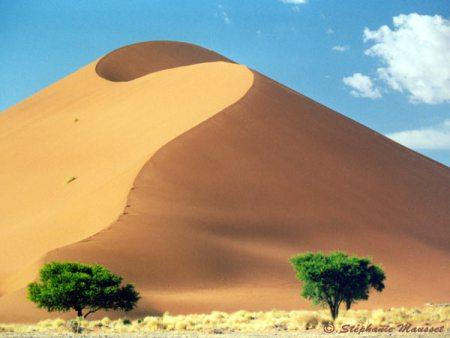 Sand Dune (Bukit Pasir)
