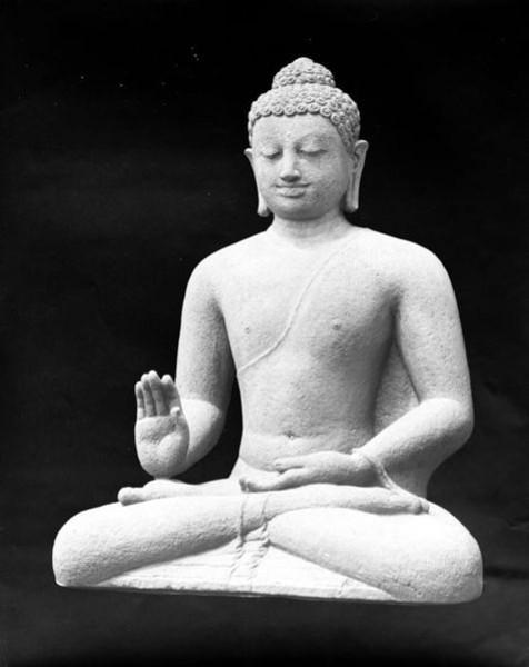 Sang Buddha
