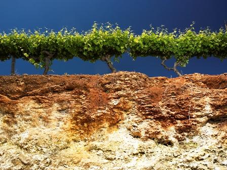 sifat-sifat tanah