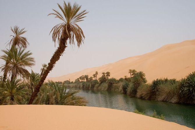 Gurun di Arab