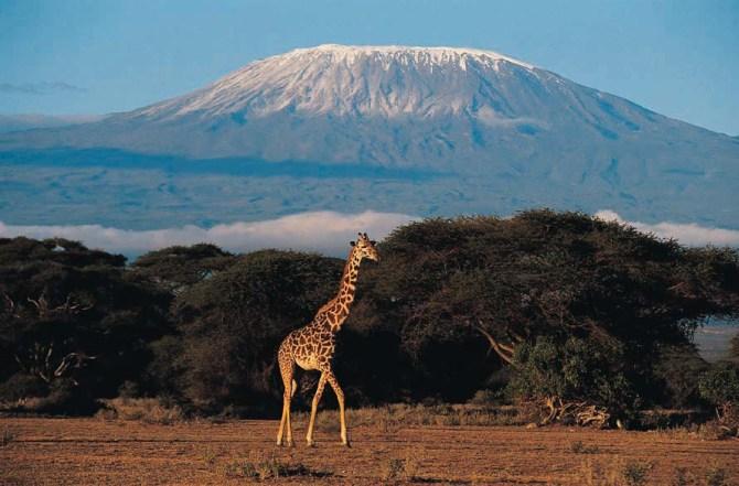 Gunung Kili Manjaro, Tanzania, salah satu Gunung api tertinggi